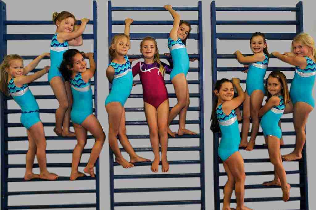 Wynland Gymnastics kidi-gym-gymnasts-climbing