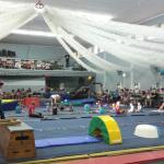 Wynland Gymnastics Lindas Kidi Gymnastic training