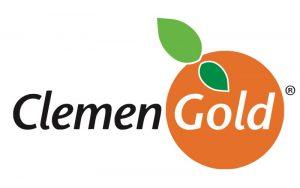 Clemen Gold Gymnastics Logo